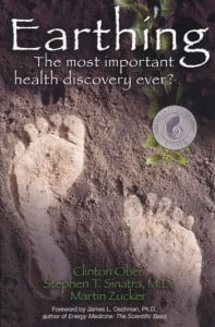 earthing grounding book