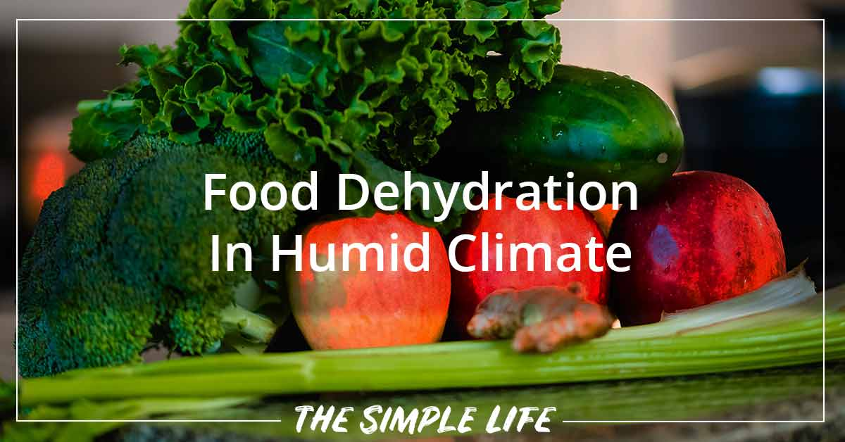 Food Dehydration In Humid Climate